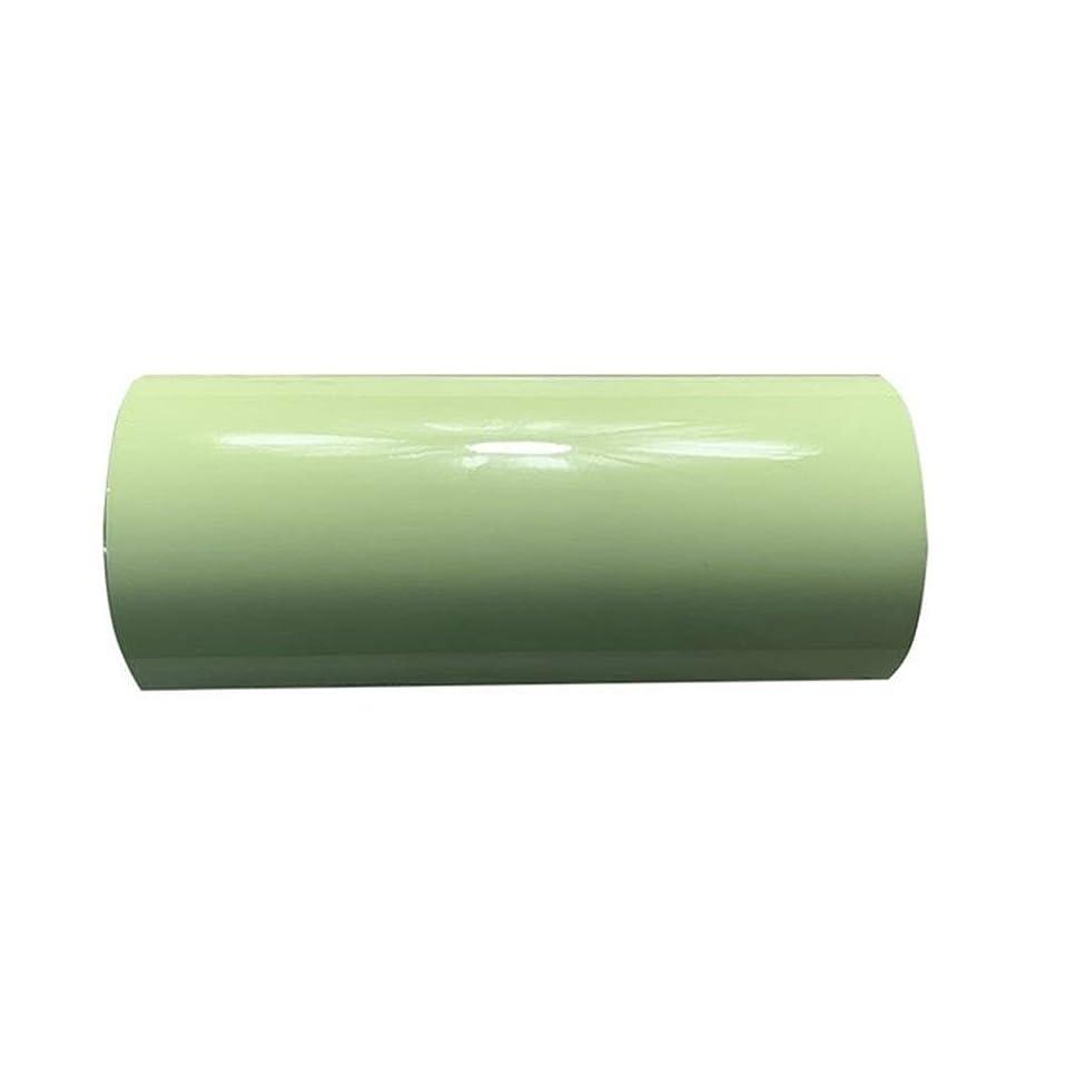 モーテル半ば聡明LKSPD 1シート25cmx50cmルミナス熱伝達ビニールグロー暗い夜光熱プレス機TシャツアイアンでHTV (Color : E010 white to green)
