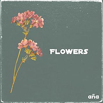 Flowers (Lo Fi)