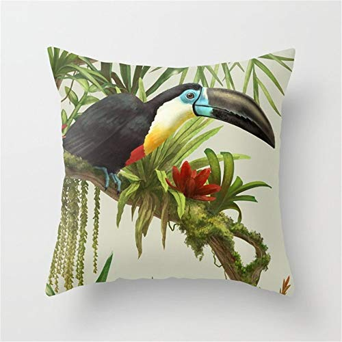 Betrothales Chaîne Bill Toucan Vintage Illustration. Taie Chic Casual D'Oreiller 18X18 Simplicity Mode À Utiliser Confortablement Au Quotidien (Color : Colour, Size : Size)