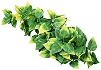 Extremely realistic replicas of real plants Easy to clean and maintain Can be used in conjunction with real plants