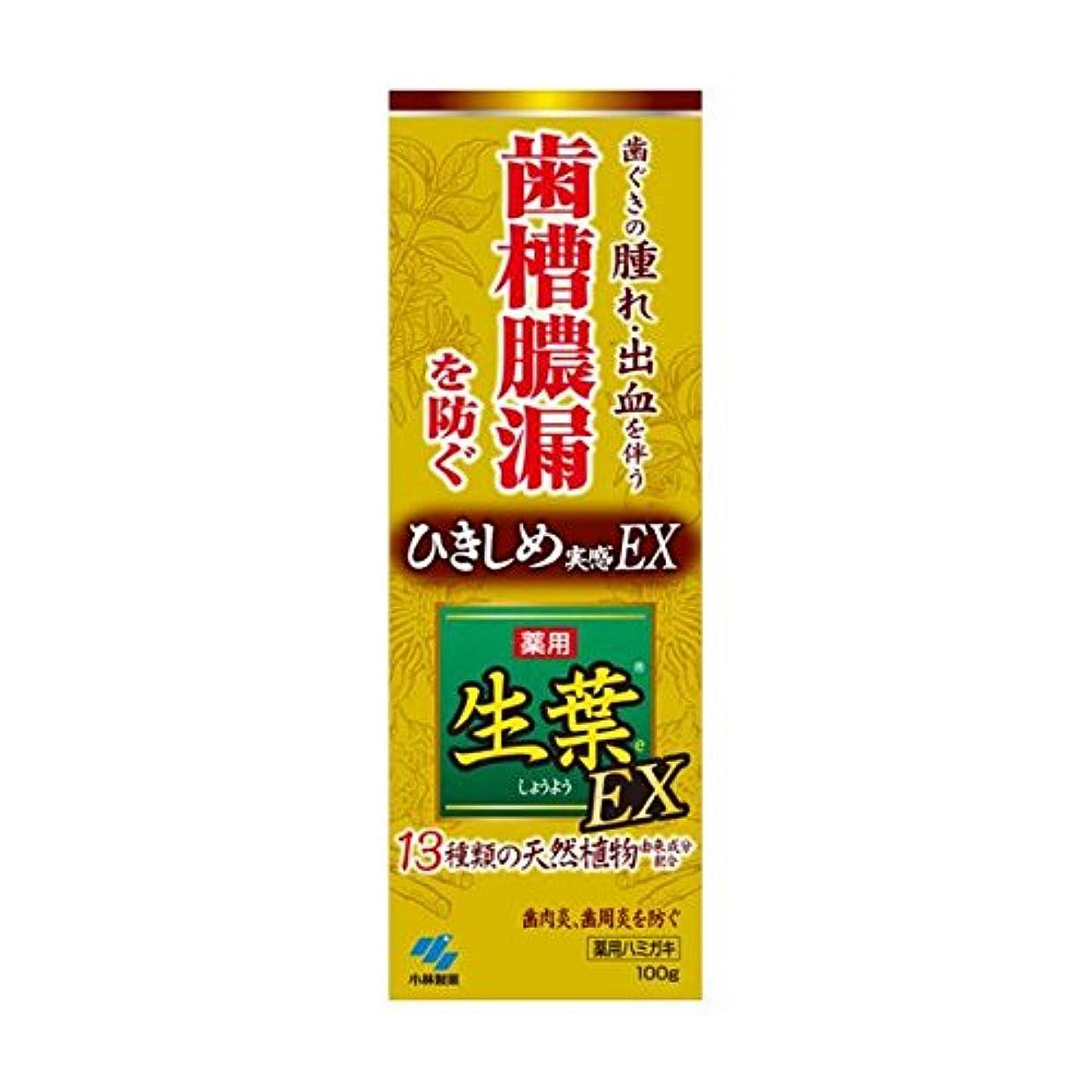 ファックスキモい家庭生葉EX 100g x2個セット