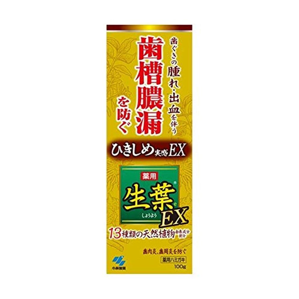 ガロン味政治家の生葉EX 100g x2個セット