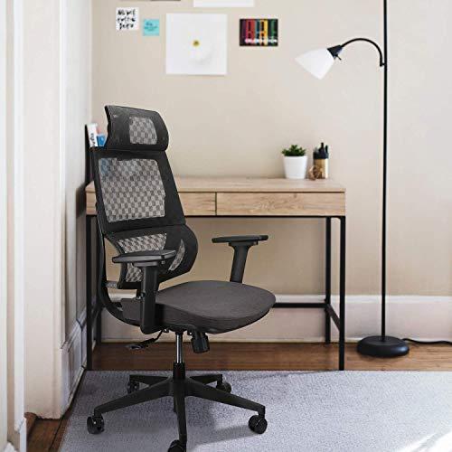Argomax Mesh Office Chair, Ergonomics Mesh Chair Computer Chair with Free Furniture Repair Kit