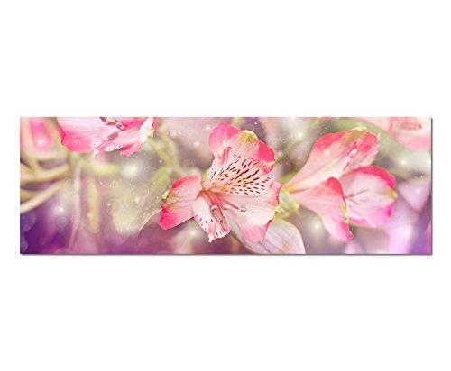 Panoramabeeld op doek en spieraam 150x50cm bloemen kleurfilter roze roze