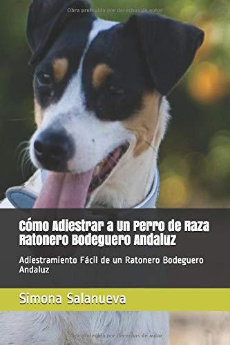 Cómo Adiestrar a Un Perro de Raza Ratonero Bodeguero Andaluz: Adiestramiento Fácil de un Ratonero Bodeguero Andaluz