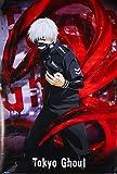 Grupo Erik Tokyo Ghoul Ken Kaneki, Papel, Póster Solo, 24-Inches x 36-Inches