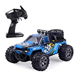 Highttoy RC Cars for Boys,1:18 Scale 20km/h High Speed Off Road RC Racing