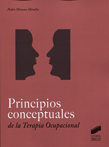 Principios conceptuales en Terapia Ocupacional: 12