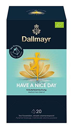 Dallmayr Teepyramide Have a nice Day, 60g