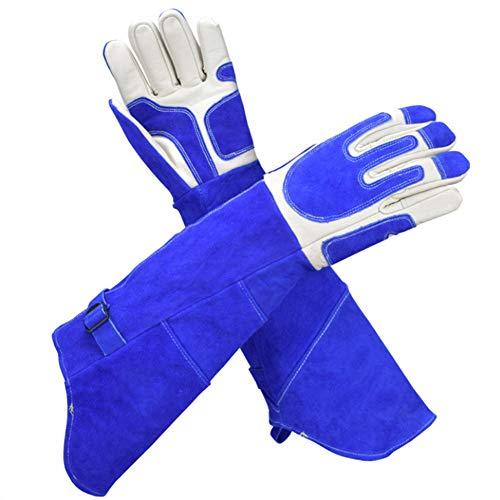 XINGSEB Seil Tiere Handhabung Schutzhandschuhe, Anti-Biss-Handschuhe, Weiches Leder Verdicken Kratzfeste Handschuhe für Hunde Schlangen Cat Bird Lizard, Blau (Color : Blue, Size : M)