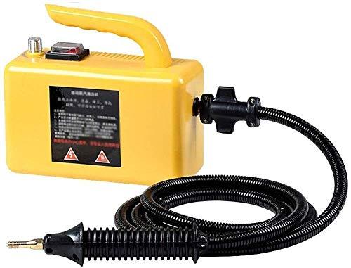 Hochtemperatur-Dampfreiniger |Haushalt Steam Machine Haube Klimaanlage Reinigung Desinfektion Hochdruckreiniger zur Fleckenentfernung, Teppiche, Bettwanzen-Steuerung, Auto dljyy