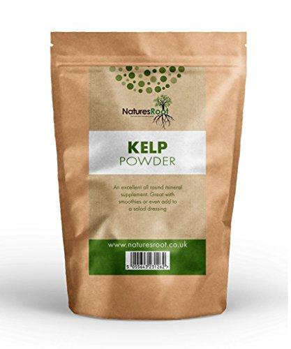 Natures Root Premium Kelp Seetang Pulver 250g - NATÜRLICHE GESICHTSMASKE | HAUTREGENERATION | FEUCHTIGKEITSSPENDEND