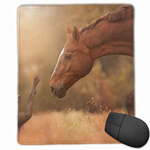 Gaming Mouse Pad, personalisierte benutzerdefinierte Maus Padnon-Slip Gummi Gaming Mouse Pad, bleiben Sie positiv, arbeiten Sie hart und machen Sie es möglich Pferd trifft Hund
