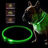 KABB - Collar para Perro con luz LED, Recargable por USB, para la Seguridad por la Noche, Ajustable, Resistente al Agua, Luminoso, para Perros, Talla única, Color Verde