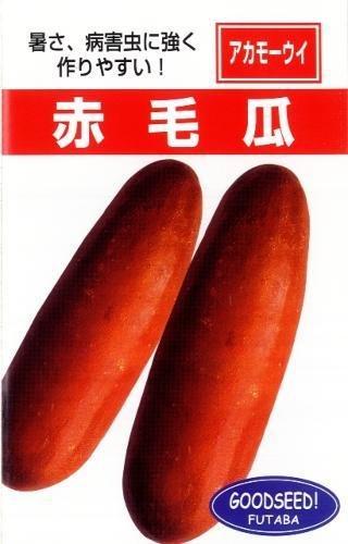 ウリ 種 沖縄赤毛瓜 小袋(約5ml)