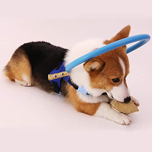 Redcolourful Anillo anticolisión Arnés para Perros con guía de círculos de protección Animal Cataratas para Mascotas ciegas 蓝 S