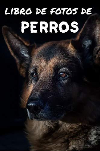 Libro de fotos de perros: Libro de ilustraciones para niños y más...