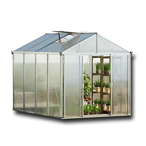 GFP TITAN23 Gewächshaus Greenhouse ohne Fundament - 295x369cm, formstabil und witterungsbeständig auch bei Hagel mit 10 mm Hohlkammerplatten, Verschiedene Sets vorhanden - Made in Austria