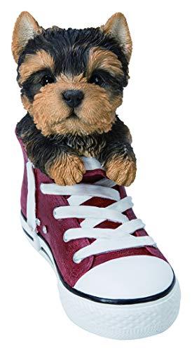 Vivid Arts - Animaux domestiques dans des chaussures de sport, Yorkshire Terrier - Décoration de maison ou de jardin (SS-YKTR-F)