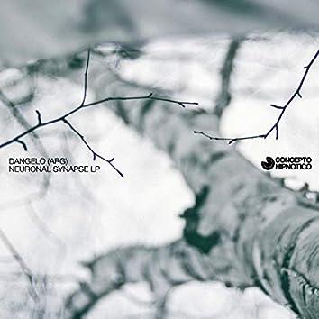 Neuronal Synapse