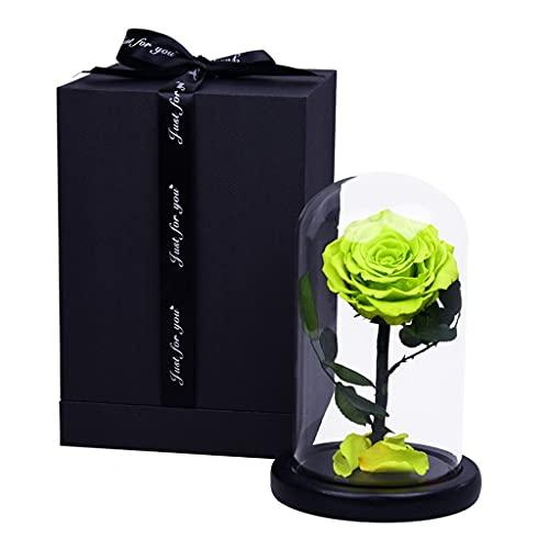 WZ Flor Eterna por Siempre Rosa Flor Real Preservada La Bella Y La Bestia Rose En Cúpula Cristal para El Dia San Valentin Cumpleaños Aniversario Decoración (Color : Green)