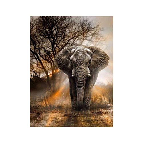 AIUIN 5D Diamant volledige schilderset roos kubus ronde diamant DIY kruis steek kristal strass borduurwerk schilderijen kunst handwerk voor huis muurdecoratie 20 * 30 cm olifant