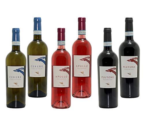 Vini Taburno Sannio DOC - 2 x Aglianico del Sannio Rosato - 2 x Piedirosso Taburno Sannio - 2 x Coda di Volpe Taburno Sannio - Ocone Vini 1910 - Bottiglie da 75cl