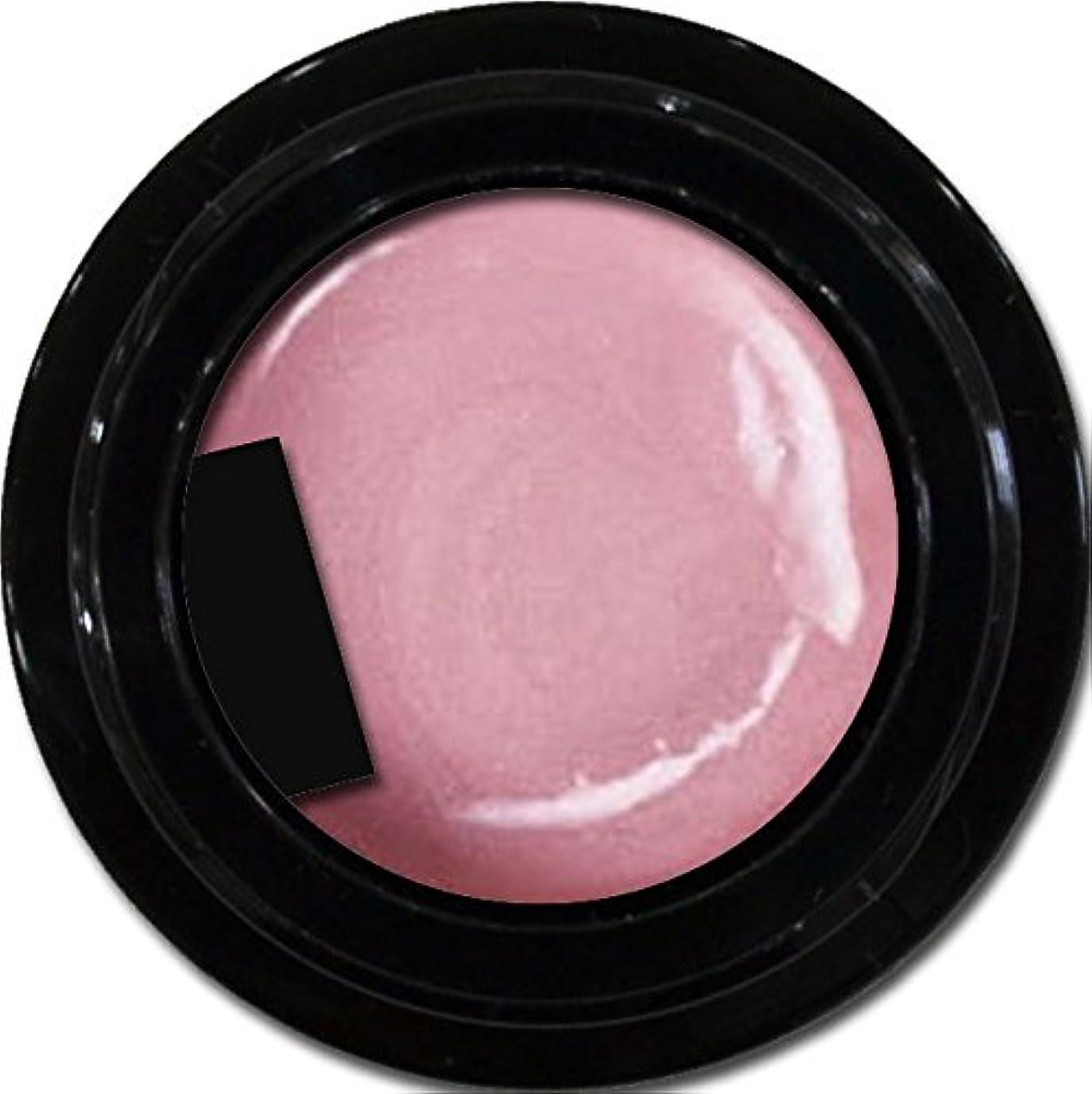 モンクすすり泣き療法カラージェル enchant color gel P504 LashicRose 3g/ パールカラージェル P504ラシックローズ 3グラム