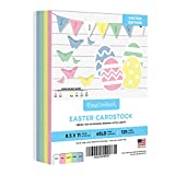 Easter Colored Card Stock Paper, 8.5 x 11' Multi-Color Bulk Cardstock for Spring Greetings, Gift Tags, Art & Crafts, Invitations | 25 Pink, 25 Green, 25 Blue, 25 Canary, 25 White (125 Sheets Total)
