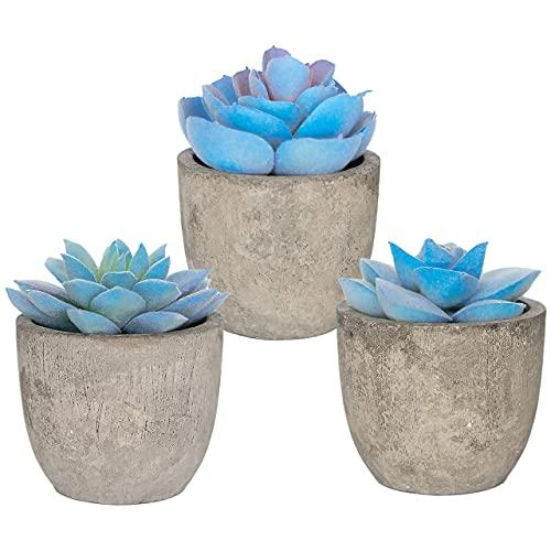 3 Blue Artificial Plants for Home Decor Modern Farmhouse Rustic Decoration Realistic Indoor Fake Plants Potted Succulents Faux Home Decor Office Room Dorm Bathroom Restroom Kitchen Table Centerpieces