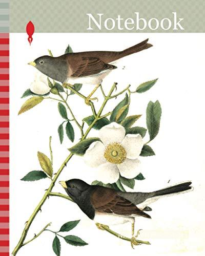 Notebook: Oregon Snow-Bird. 1. Male. 2. Female. (Rosa Laevigata), Audubon, John James, 1785-1851