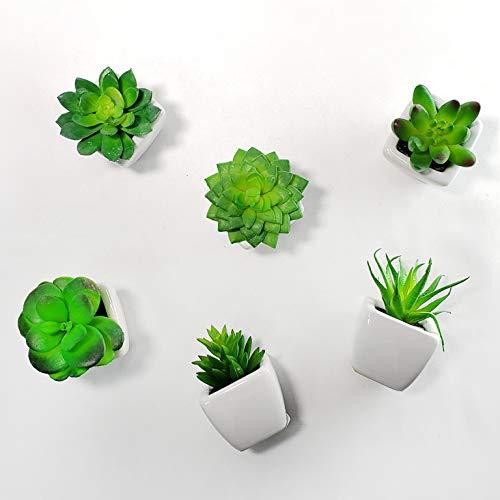Kit 6 Mini Suculentas Artificiais Em Vaso Branco De Cerâmica