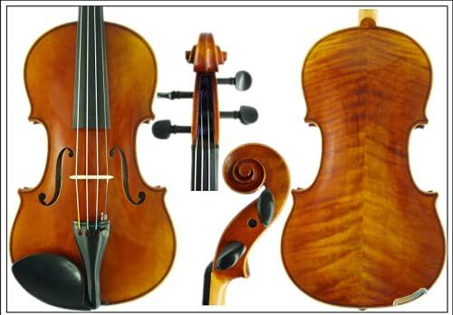 D Z Strad Violin - Model 300 - Light...