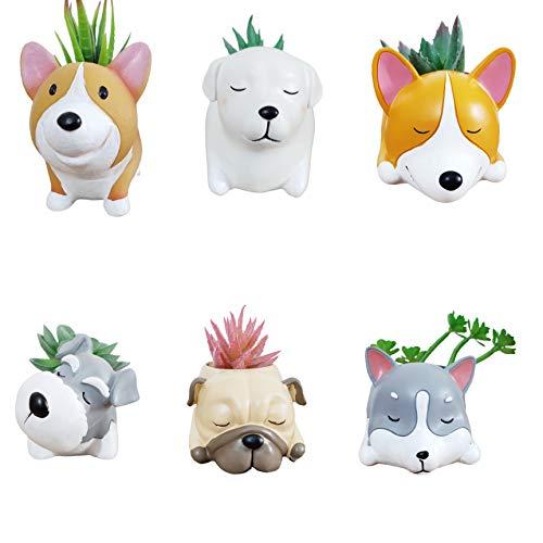 Juego de 6 piezas de dibujos animados de animales Corgi Husky Labrador Pug Schnauzer en forma de cactus suculenta/macetas/maceteras/contenedor para decoración de escritorio del hogar, jardín, oficina (plantas no incluidas)