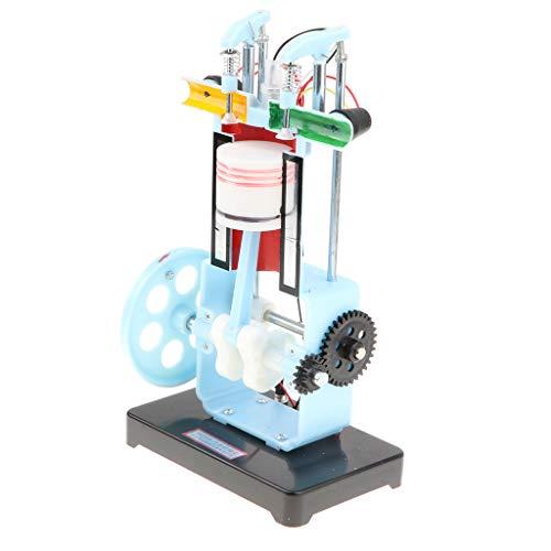 Homyl Metall Viertakt Verbrennungsmotor Modell für Physik Lehrmittel