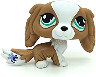 ZAD Littlest Pet Shop Brown & White Puppy King Charles Spaniel Dog Toys LPS #1825