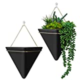HangerSpace Large Wall Planter 2...