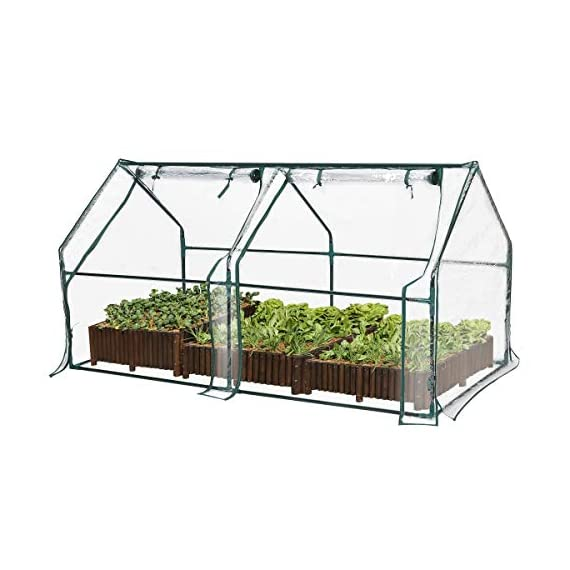 "Tooca 71"" x35"" x35"" portable greenhouse for indoor outdoor gardens/patios/backyards, suitable young plants (not included garden bed) 1 【perfect plant protection】clear pvc cover can stop plant seeds or young plants from frost, and keep internal moisture. It's ideal for maintaining seeds' breeding and plants' growing, helping extend the growing season for all year around. 【2 roll-up zippered doors】the mini greenhouse has two doors, which makes it easy and convenient for watering and ventilation. 【steady & reliable】iron frame with spray paint rust prevention treatment is sturdy and durable."