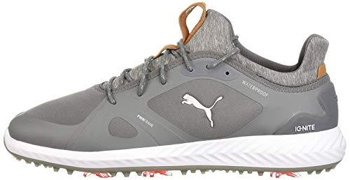 PUMA Golf Men's Ignite Pwradapt Golf Shoe, Quiet Shade/Quiet Shade, 8 Medium US
