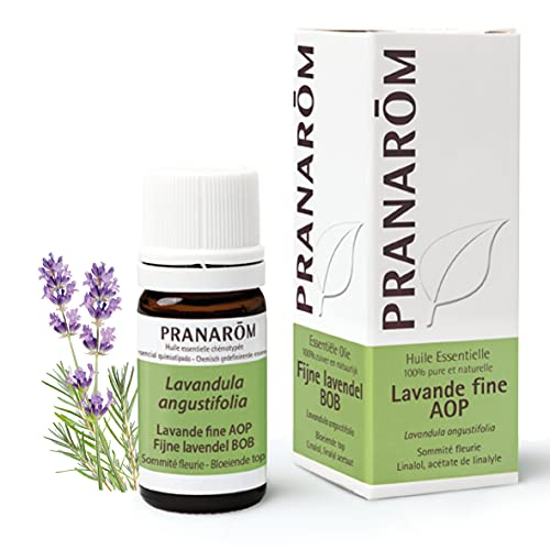 Pranarôm   Huile Essentielle Lavande Fine AOP   Lavandula angustifolia   Sommité Fleurie   HECT   5 ml