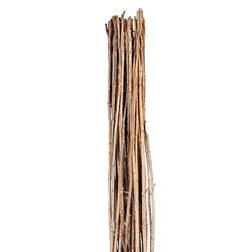 Weidenprofi Haselnussruten zum Verarbeiten, Flechtruten aus unbehandelter Hasel, Ø 1-2 cm, Länge ca. 160-180 cm - Verpackungseinheit: 25 Stück