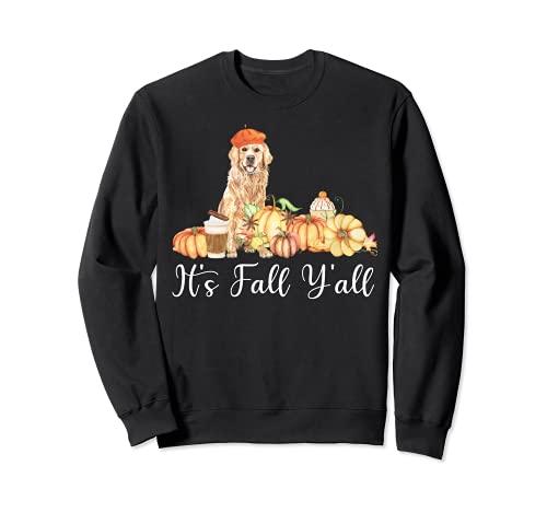 It's Fall Y'all Funny Dog Lover Labrador Regalo Otoño Calabaza Sudadera