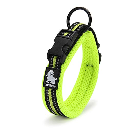 Chai's Choice Best Padded Comfort Cushion Dog Collar for Small, Medium, and Large Dogs and Pets. Perfect Match Front Range Harness Leash. (Medium, Green)