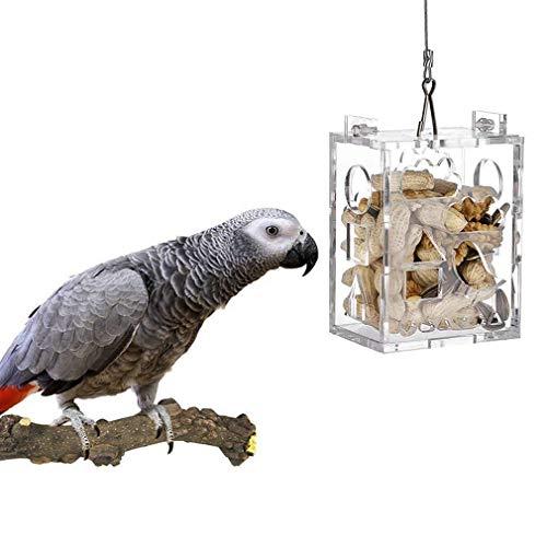KONKY Acrílico Comederos para pájaros y Loros, Comedero Colgante para pájaros Silvestres Contenedor de Comida al Aire Libre Impermeables, Cesta de Aperitivos para periquitos, cacatúas y Ardilla