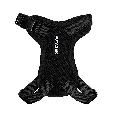 Best Pet Supplies, Inc. Voyager Step-in Lock Cat Harness - Adjustable Step-in Vest Harness for Small and Large Cats - Black, XXS (Chest: 10-14