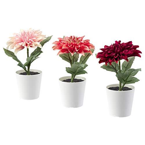 Ikea FEJKA Mini Künstliche Schreibtischpflanzen in Töpfen, Dahlie, Rosa, 6 cm, 6 Stück