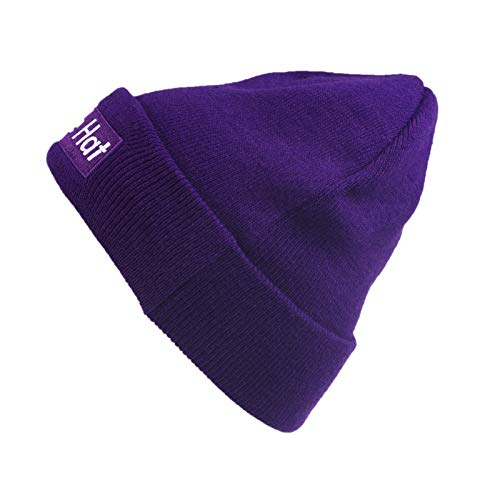 Abourbay Unisex Purple Hat Knitted Beanie Cuff Hats Embroidery Skull Caps