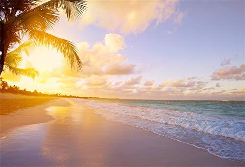 Cassisy 3x2m Vinilo Mar Telon de Fondo Vacaciones Tropical Playa de Arena Amanecer Árboles de Palmas de Coco Fondos para Fotografia Party Photo Studio Props Photo Booth