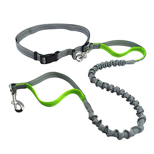 Justzon Hands Free Waist Dog Leash with Retractable Bungee, Adjustable Waist Belt, Dual Handles, Night Reflective Design, for Running Walking Training Hiking (GreyGreen)