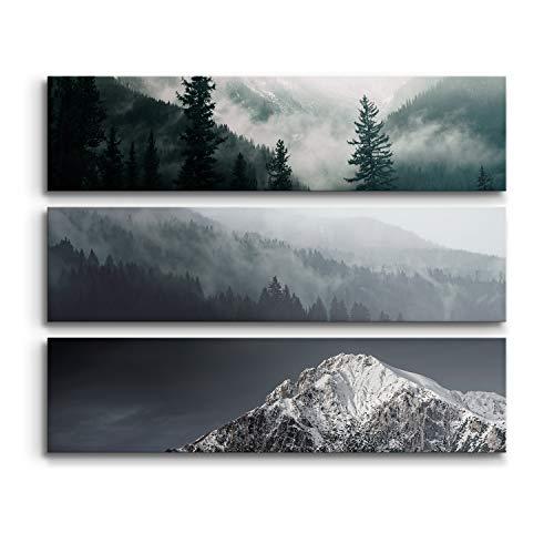 DON LETRA Juego de 3 Cuadros en Lienzo, Bosque y Montaña, 120 x 90 x 2 cm, Cuadros Modernos para Decoración de Salón y Dormitorio, LZ-007